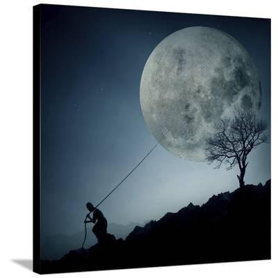 The Dreamer-Final Toto-Stretched Canvas Print