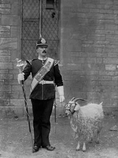 The Drum Major and Goat of the 1st Battalion the Welch Regiment, 1896-WM Crockett-Giclee Print