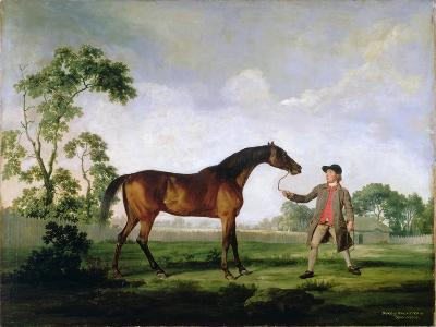 """The Duke of Ancaster's Bay Stallion """"Spectator"""", Held by a Groom, c.1762-5-George Stubbs-Giclee Print"""