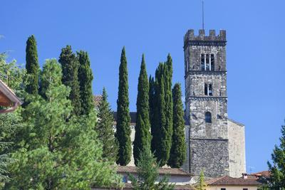 https://imgc.artprintimages.com/img/print/the-duomo-of-san-frediano-barga-tuscany-italy-europe_u-l-q1brubu0.jpg?p=0