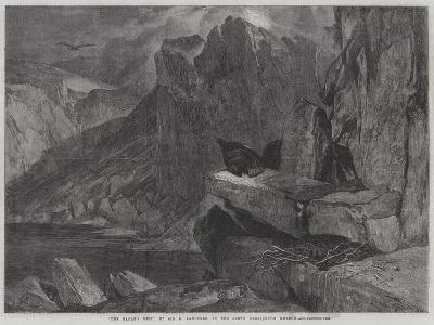 The Eagle's Nest-Edwin Landseer-Giclee Print