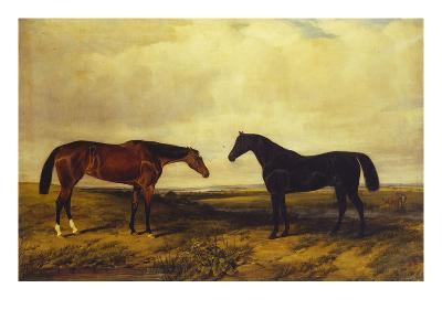 The Earl of Granards's Bright Bay Filly and Dark Bay Stallion Standing in an Extensive Landscape-William Luker-Giclee Print