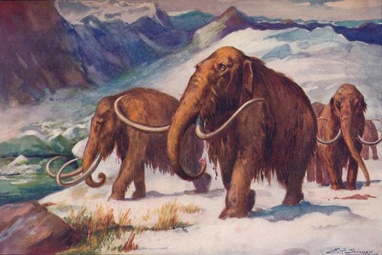 The early Ice Age, when mammoths roamed the Earth and Man was arising, 1907-Unknown-Giclee Print