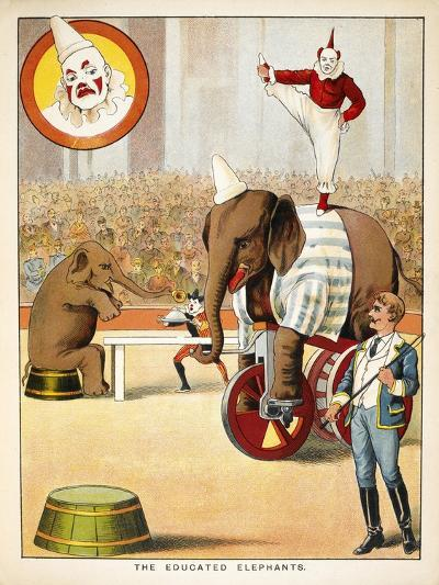 The Educated Elephants'. an Involving Elephants and Clowns in a Circus--Giclee Print