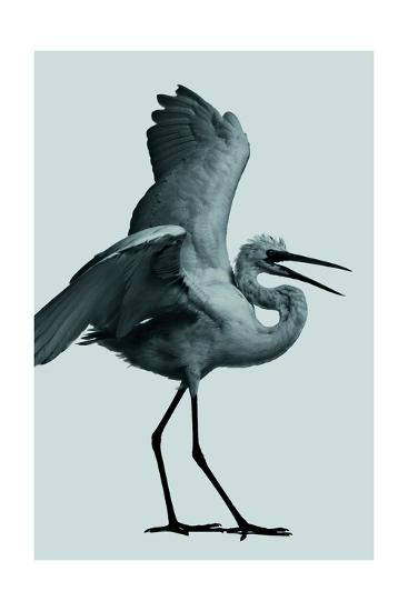 The Egret--Giclee Print