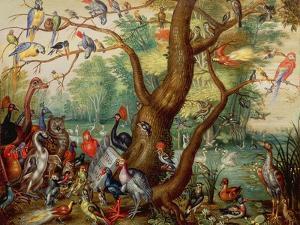 Concert of Birds by The Elder Kessel Jan Van