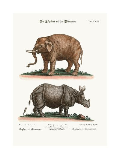 The Elephant and the Rhinoceros, 1749-73-George Edwards-Giclee Print