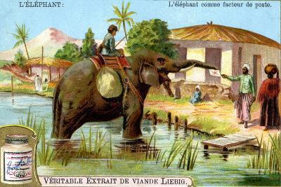 The Elephant as Postman, C1900--Giclee Print