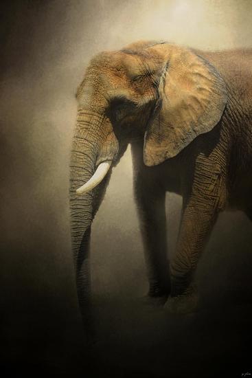 The Elephant Emerges-Jai Johnson-Giclee Print