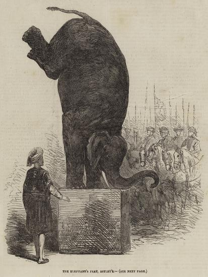 The Elephant's Feat, Astley's--Giclee Print