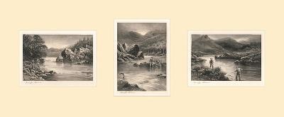 The Elusive Salmon Triptych-Douglas Adams-Premium Giclee Print