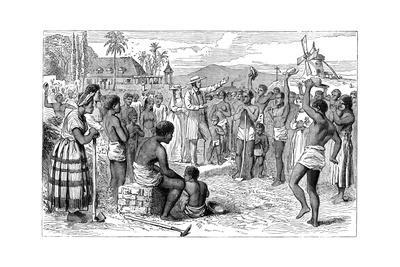 The Emancipation of Slaves on a West Indian Plantation, Early 19th Century--Giclee Print