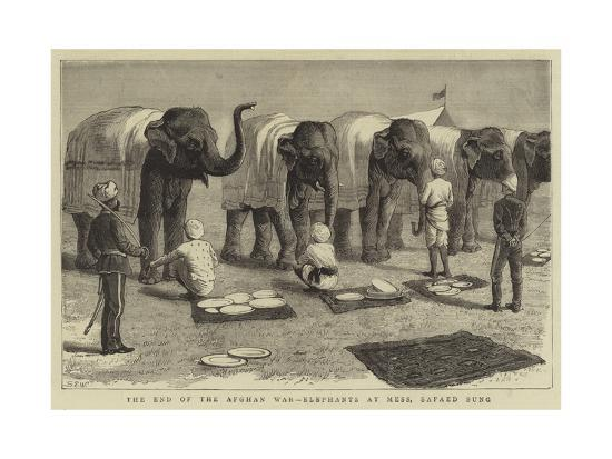 The End of the Afghan War, Elephants at Mess, Safaed Sung-Samuel Edmund Waller-Giclee Print