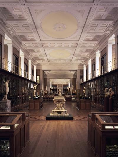 The Enlightenment Gallery--Photographic Print
