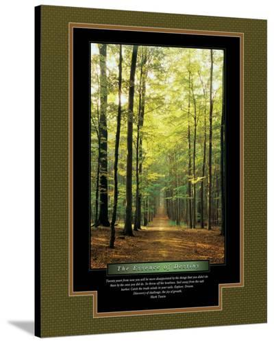 The Essence of Destiny--Stretched Canvas Print