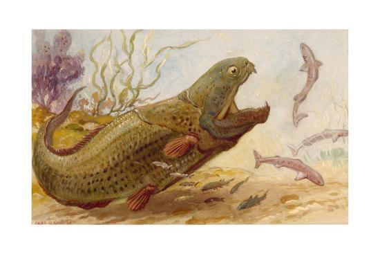 The Extinct Dinichthys Fish Could Grow Up to Twenty-Five Feet Long-Charles R. Knight-Giclee Print
