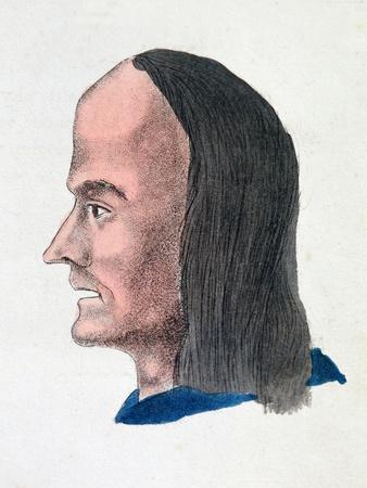 https://imgc.artprintimages.com/img/print/the-facial-characteristics-of-a-loafer-1808_u-l-ptgxo70.jpg?p=0