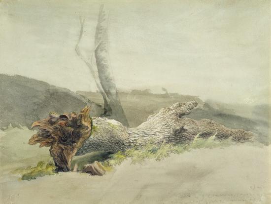 The Fallen Tree, C.1804-Robert Hills-Giclee Print