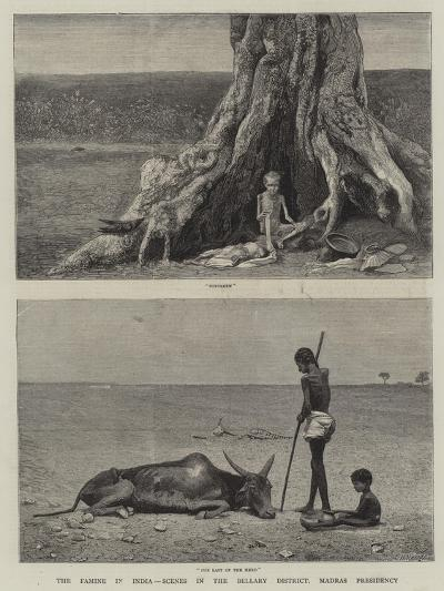 The Famine in India, Scenes in the Bellary District, Madras Presidency--Giclee Print