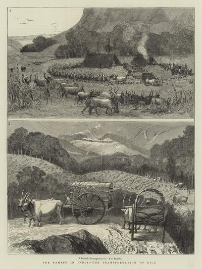 The Famine in India, the Transportation of Rice--Giclee Print