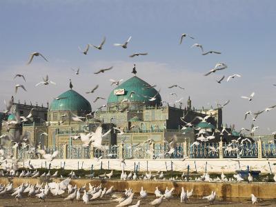 The Famous White Pigeons, Shrine of Hazrat Ali, Mazar-I-Sharif, Balkh Province, Afghanistan-Jane Sweeney-Photographic Print