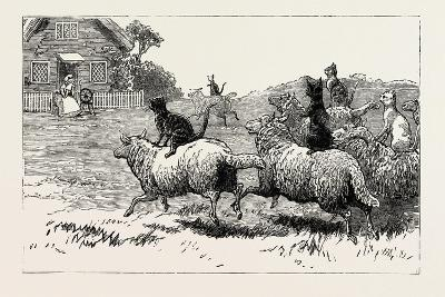The Farmer Soon Heard Where His Sheep Went Astray, 1890--Giclee Print