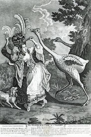 The Feathered Friend in a Fright, 1779-John Collet-Giclee Print