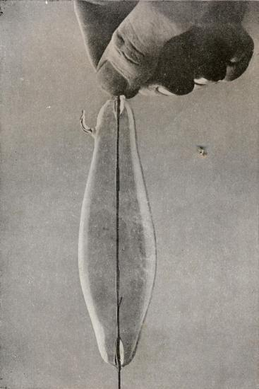 The First Incandescent Electric Lamp, C1916--Giclee Print