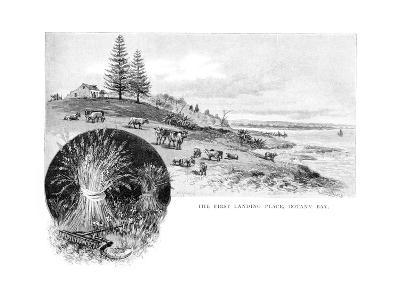 The First Landing Place, Botany Bay, New South Wales, Australia, 1886-W Macleod-Giclee Print