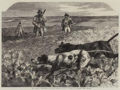 The First of September, Partridge-Shooting-Harrison William Weir-Giclee Print