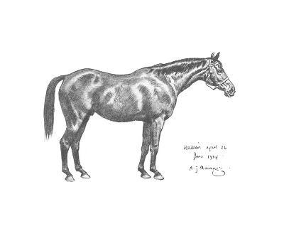 The First Study of Warrior-Sir Alfred Munnings-Premium Giclee Print