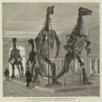 The Five Fossil Iguanodons in the Bernissart Gallery of the Natural History Museum at Brussels--Giclee Print