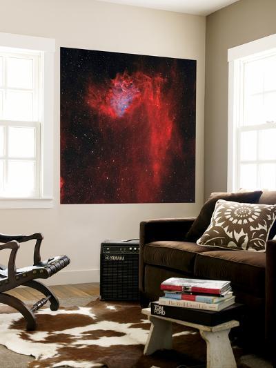 The Flaming Star Nebula-Stocktrek Images-Wall Mural