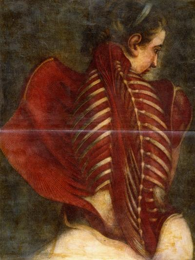 The Flayed Angel, C.1745-Jacques-Fabien Gautier d'Agoty-Giclee Print