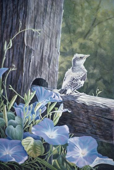 The Fledgling - Young Mockingbird-Wilhelm Goebel-Giclee Print