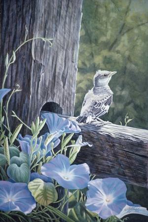 https://imgc.artprintimages.com/img/print/the-fledgling-young-mockingbird_u-l-psgeyq0.jpg?p=0