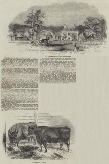 The Flemish Farm at Windsor Great Park--Giclee Print