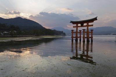 The Floating Miyajima Torii Gate of Itsukushima Shrine at Sunset-Stuart Black-Photographic Print