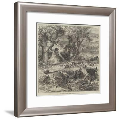 The Floods in South Wales, Scene Near Cardiff--Framed Giclee Print