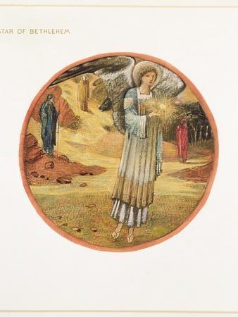 https://imgc.artprintimages.com/img/print/the-flower-book-ww-star-of-bethlehem-1905_u-l-pjjjs90.jpg?p=0