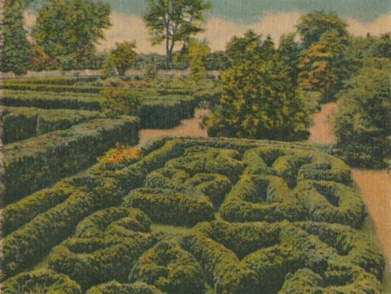 'The Flower Garden, general view', 1946-Unknown-Giclee Print