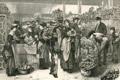 The Flower Market, Covent Garden, London-Edwin Buckman-Giclee Print