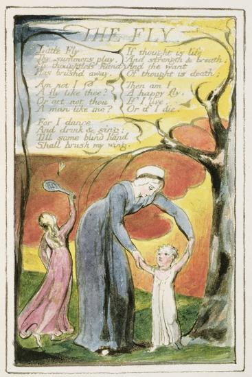 The Fly: Plate 41 from 'Songs of Innocence and of Experience' C.1802-08-William Blake-Giclee Print