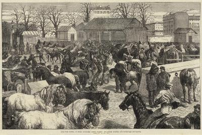 The Food Supply of Paris, Butchers' Horse Market, Boulevard D'Enfer and Boulevard Montrouge-Harrison William Weir-Giclee Print