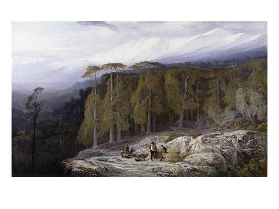 The Forest of Valdoniello, Corsica, 1869-Edward Lear-Giclee Print