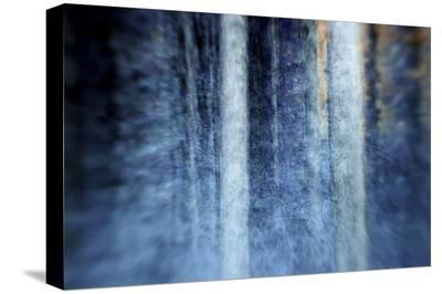 The Forest-Kostas Barbadimos-Stretched Canvas Print