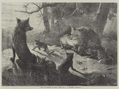 The Fox Family at Home-George Bouverie Goddard-Giclee Print