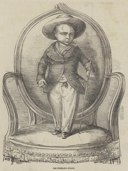 The Friesland Dwarf--Giclee Print