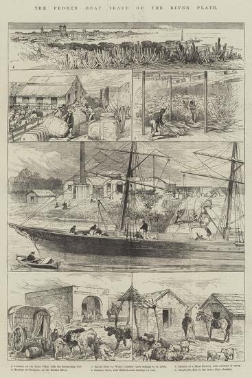 The Frozen Meat Trade of the River Plate--Giclee Print