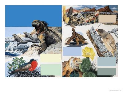 The Galapagos Islands-Arthur Oxenham-Giclee Print